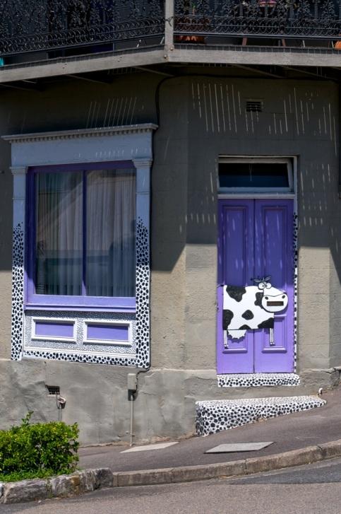 Purple Door and Cow, Glebe