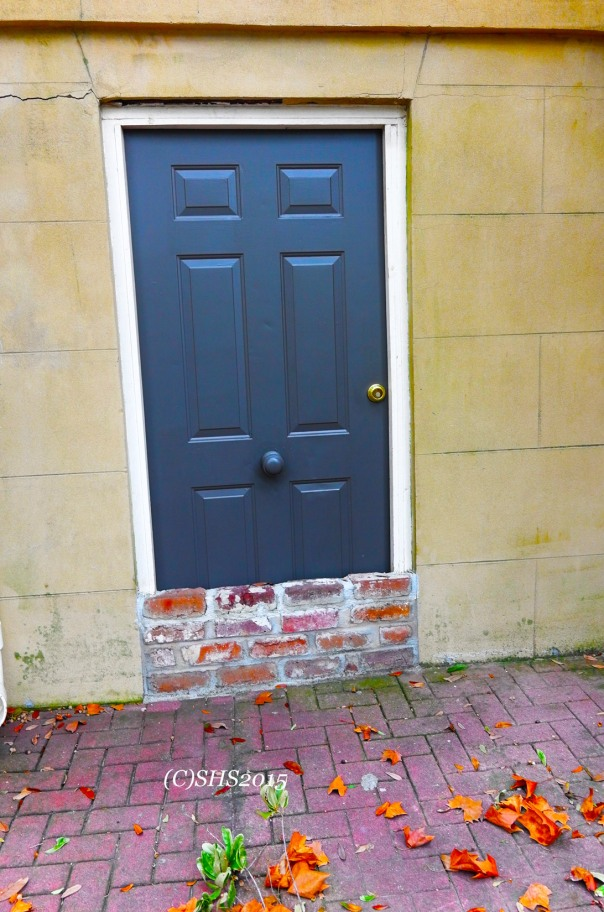 Susan Nolen's doors