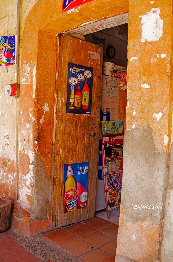 Susan Nolen's Mexican Door